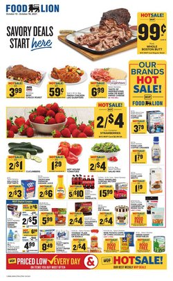 Food Lion catalog ( Expires today)