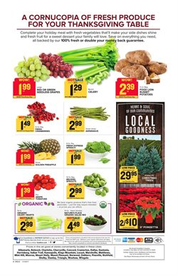 Plants deals in the Food Lion weekly ad in Newark DE