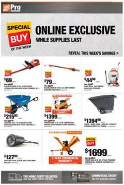Home Depot catalogue in Kissimmee FL ( 3 days left )