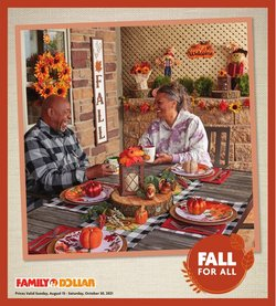 Discount Stores deals in the Family Dollar catalog ( 14 days left)