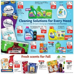 Apple deals in the Family Dollar catalog ( Expires today)