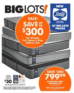 Big Lots deals in the Reading PA weekly ad