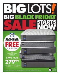 Discount Stores deals in the Big Lots weekly ad in New York
