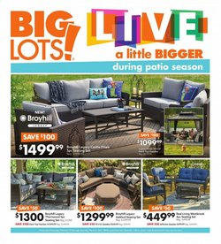 Big Lots catalogue ( Expires today )