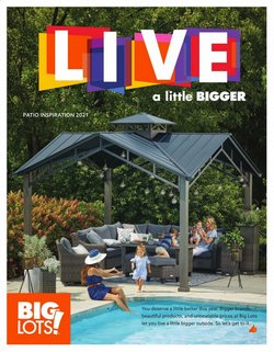 Discount Stores deals in the Big Lots catalog ( More than a month)