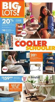 Discount Stores deals in the Big Lots catalog ( 5 days left)