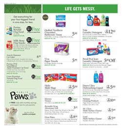 Detergent deals in the Publix weekly ad in Stone Mountain GA