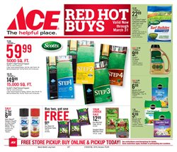 Plants deals in the Ace Hardware weekly ad in New York