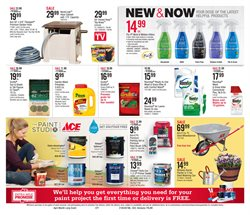 Paint deals in the Ace Hardware weekly ad in Dearborn Heights MI