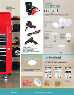 Bulbs deals in the Ace Hardware weekly ad in Federal Way WA