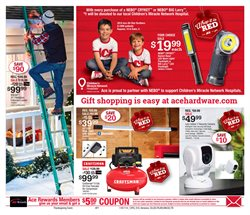 Ladder deals in the Ace Hardware weekly ad in Schenectady NY