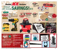 Tools & Hardware deals in the Ace Hardware weekly ad in Springfield MO
