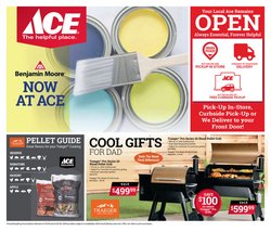 Ace Hardware catalogue in Saint Petersburg FL ( Expired )