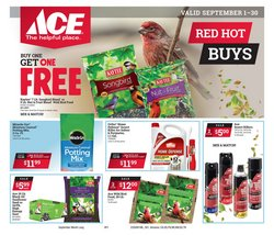 Ace Hardware catalogue ( 10 days left )