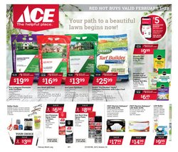 Ace Hardware catalogue ( Expires today )