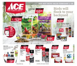 Ace Hardware catalogue ( 2 days left )