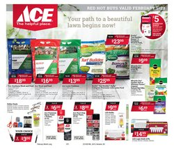 Ace Hardware catalogue ( Expires tomorrow )