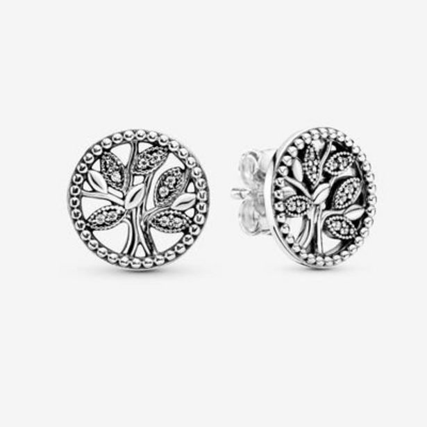 Sparkling Family Tree Stud Earrings offer at $55