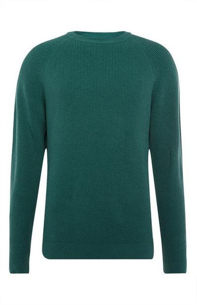 Green Textured Crew Neck Sweater offer at $15