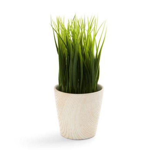 White Wooden Faux Potted Plant deals at $3.5