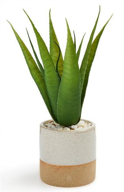 Glazed Ceramic Faux Potted Plant deals at $8