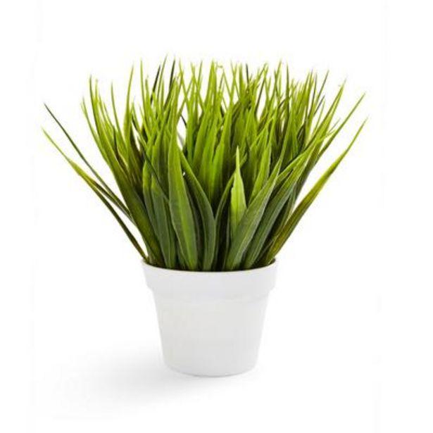 Faux Plant White Pot deals at $3.5
