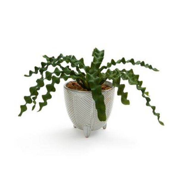 Large Ceramic Faux Potted Plant deals at $10
