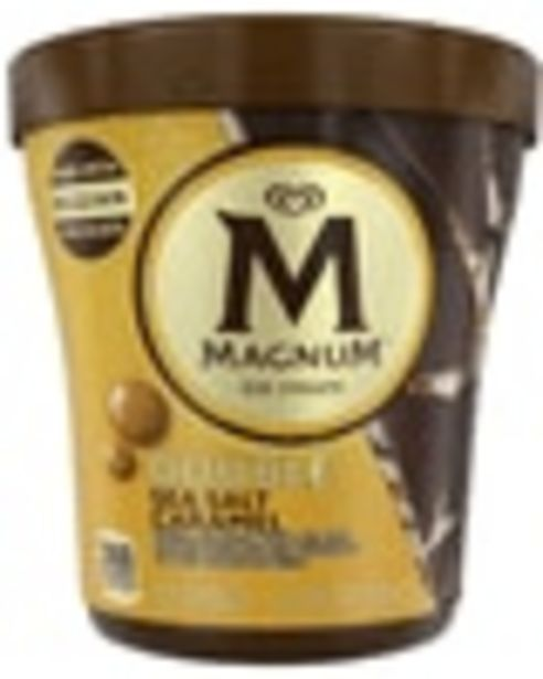 On any ONE (1) Magnum Ice Cream Tub (Excludes Magnum Dairy Bars and Magnum Non-Dairy Bars). deals at $1.25