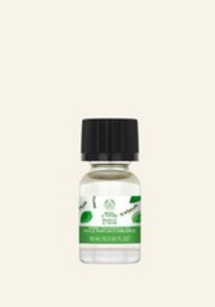 Basil & Thyme Home Fragrance Oil deals at $6
